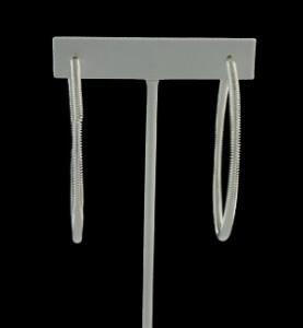 Silver Spring Hoops